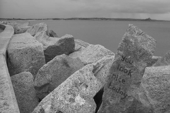 netter stein
