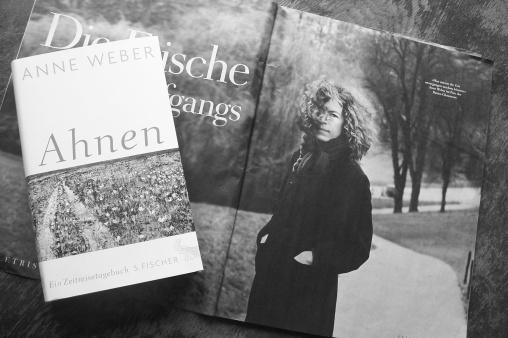 Anne Weber