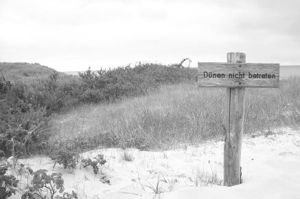 Dünen-Verbot