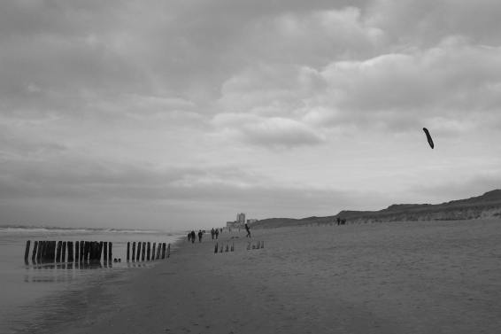 Stranddrachen