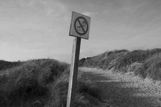 Strandhundeverbot